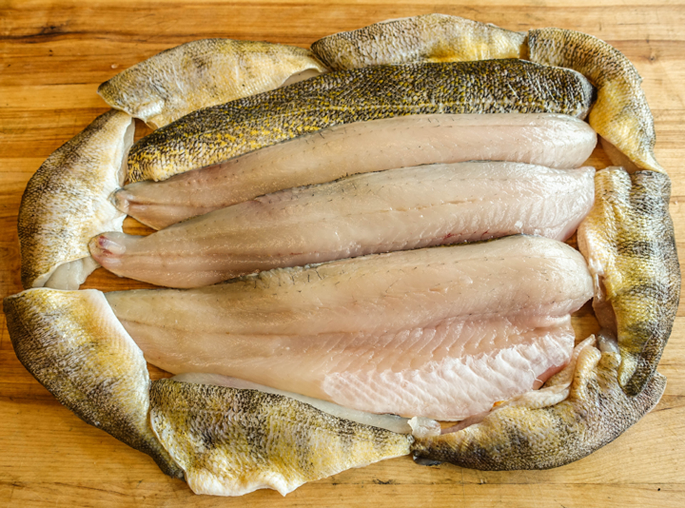 Walleye and Yellow Perch Fillets 3 inch.jpg