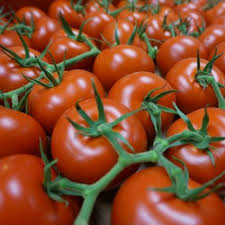 Mighty Vine Tomatoes.jpeg
