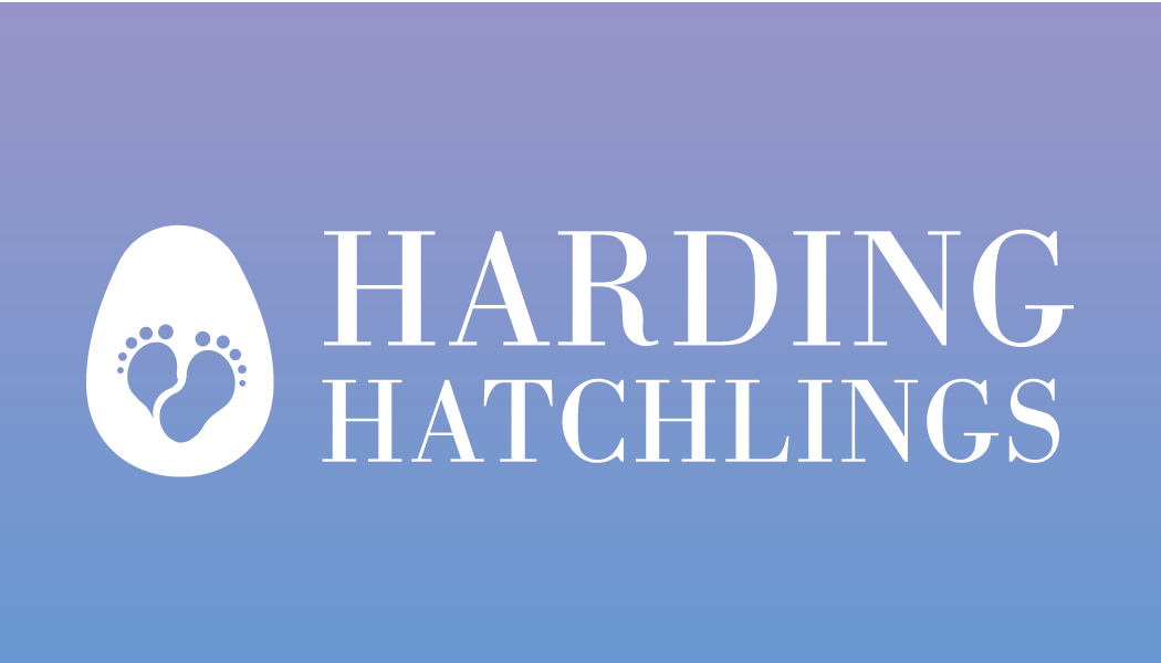 Harding hatchlings - Westchester NY based doula services and more founded by Emily Hardingwww.hardinghatchlings.com