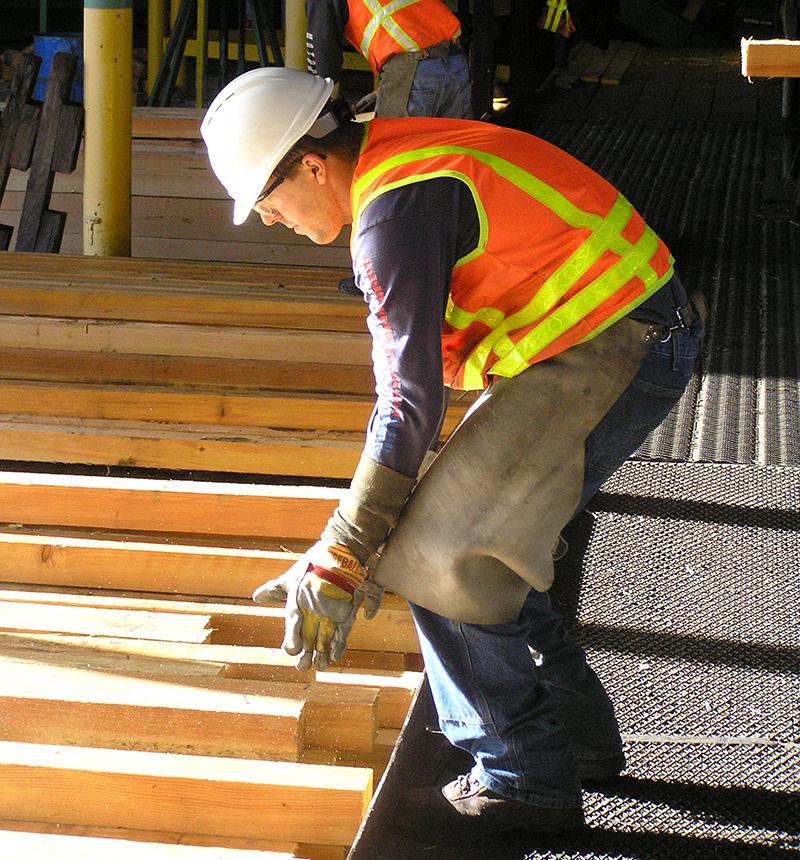lumber-industry-workplace.jpg