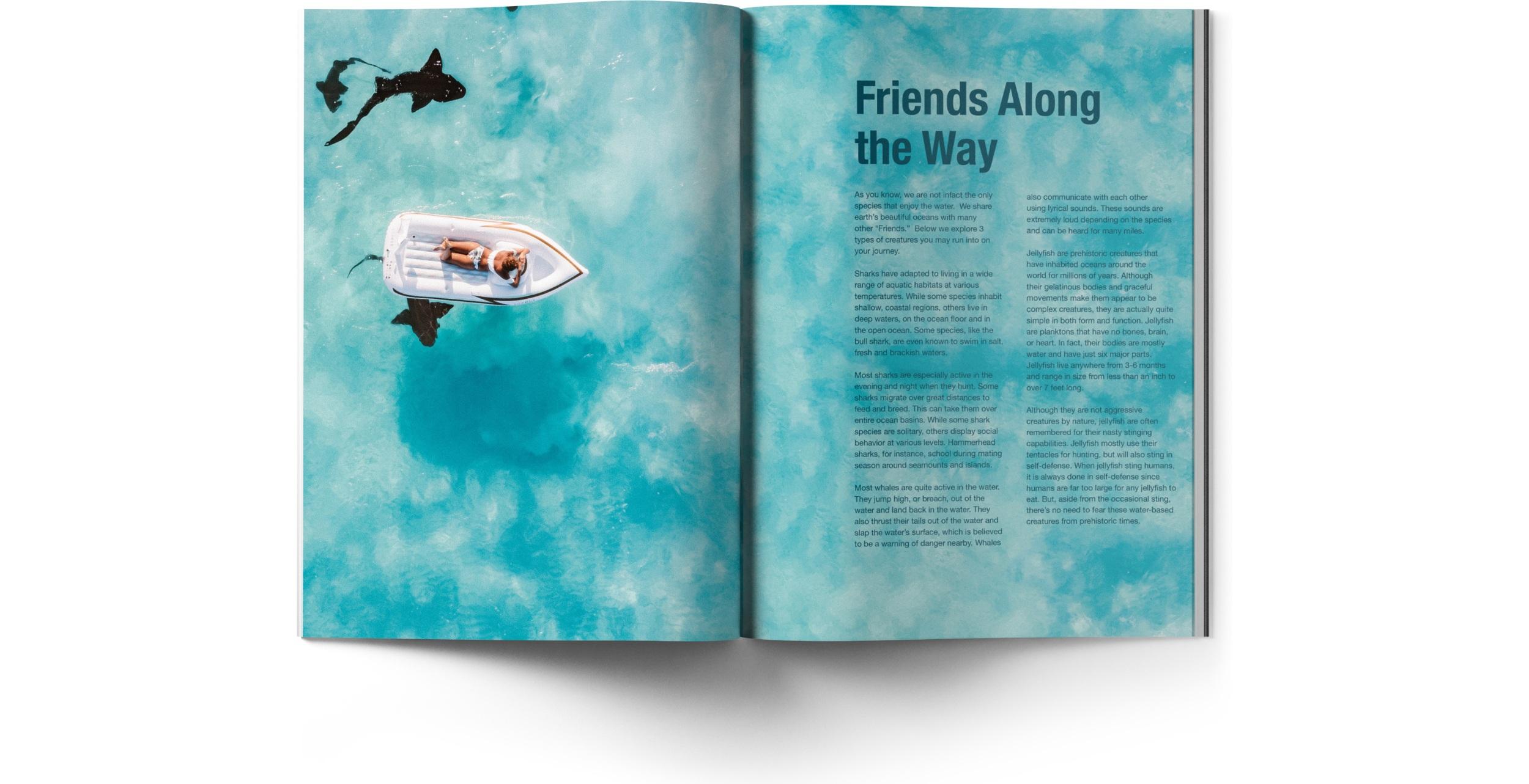 Friends+Along+the+Way.jpg