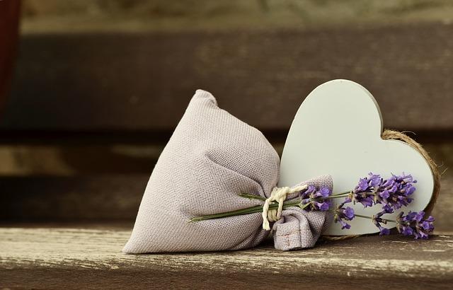 lavender-823600_640.jpg