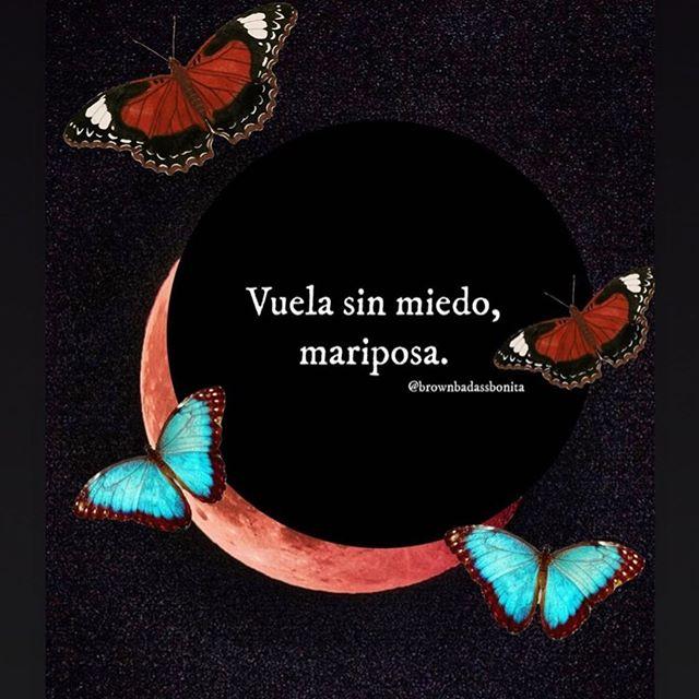 No me gustan las mariposas, pero creo que en esto momento mi corazón necesita volar como una