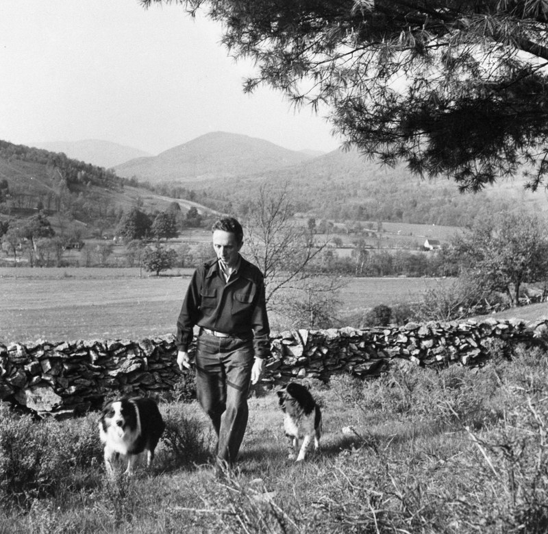 Famous artist Norman Rockwell created some of the most iconic American paintings of the 20th century. The New York City native was pictured here walking with his two Labrador retrievers near his Vermont studio.
