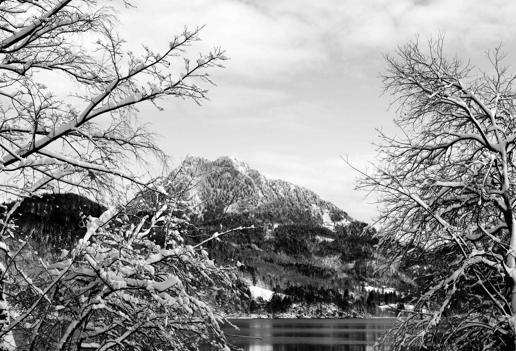 8612-Salzburg-area-lake-view-(bw).jpg