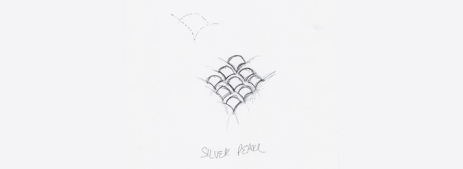 SP Scale drawn.jpg