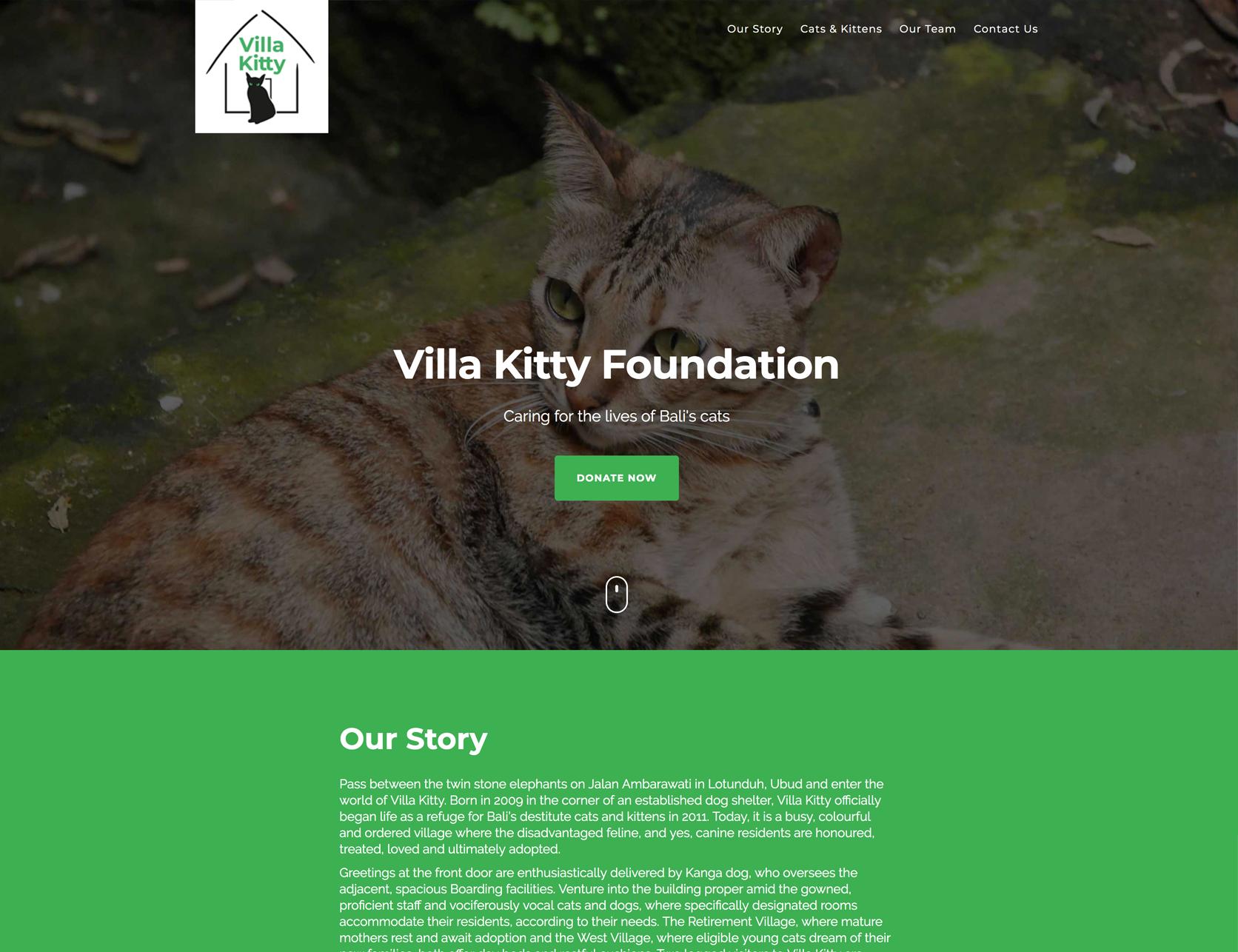 VillaKitty.jpg