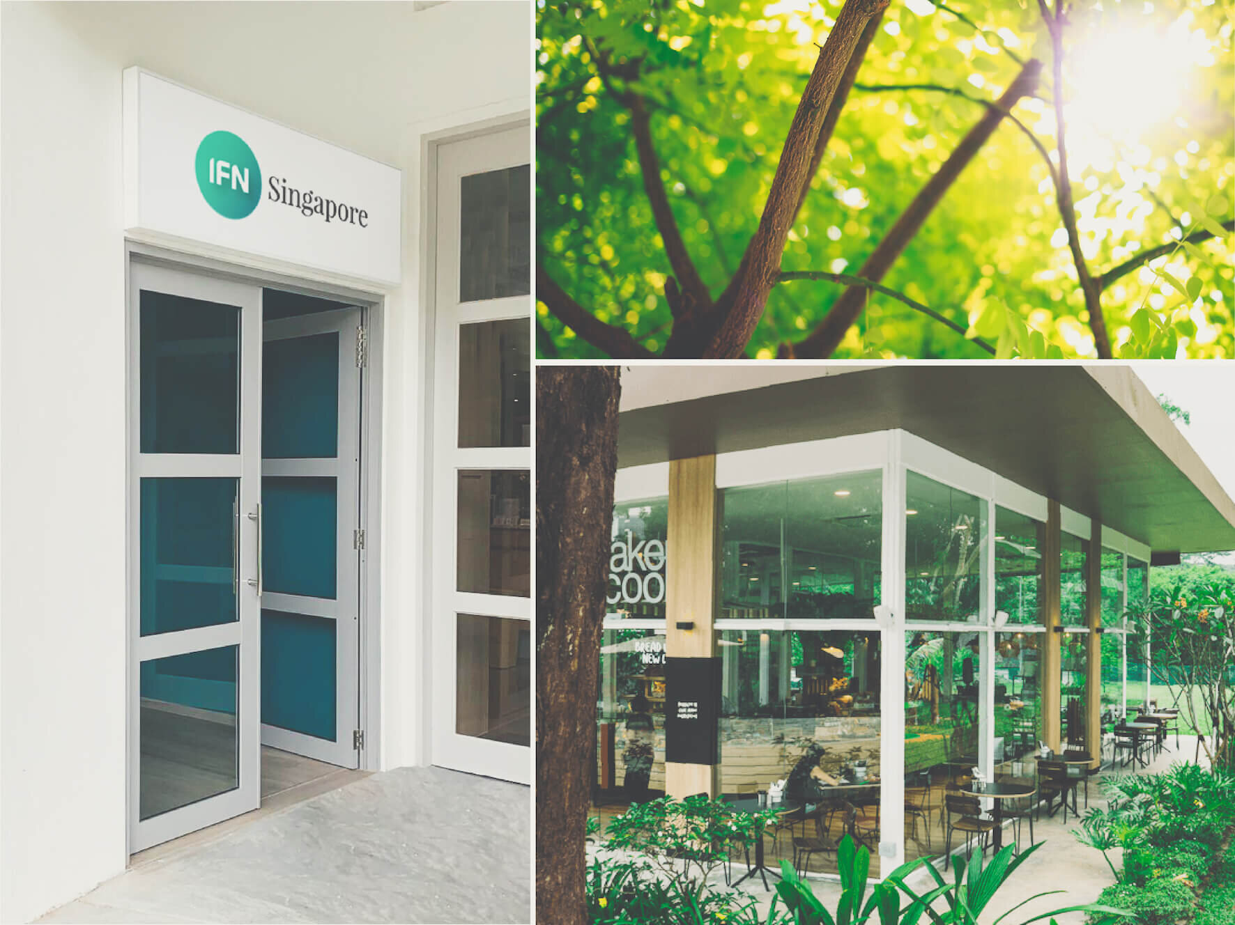Opening November 2019 - IFN Group is proud to announce that it is expanding its presence throughout the APAC region, with the opening of an additional Affiliate Clinic; IFN Singapore.Register here to receive important updates on our launch.