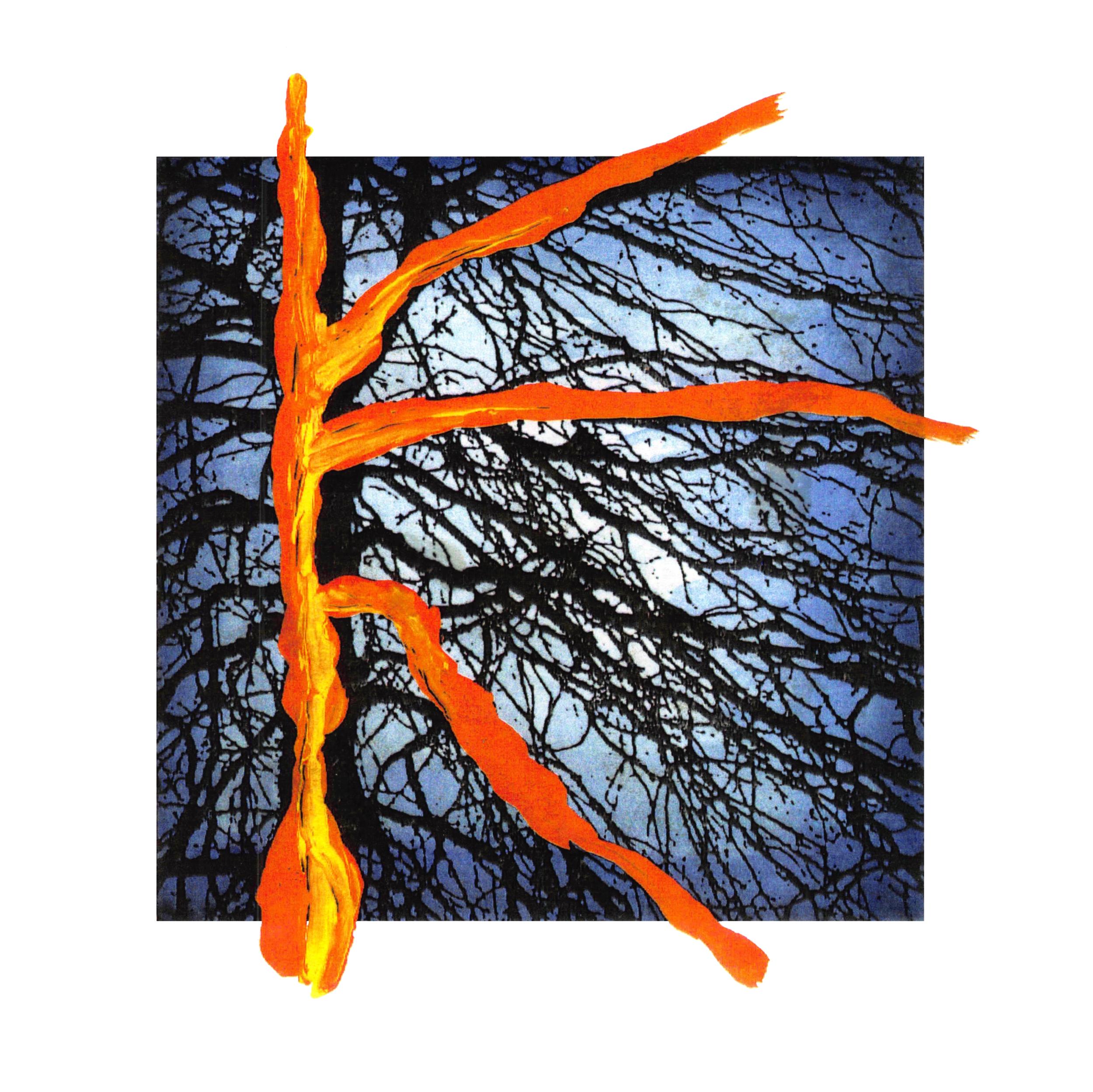 illustratie - cdhoesje Philip Glass - natuur.png