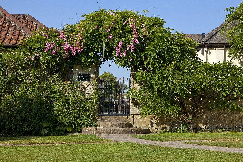 rose-archway.jpg