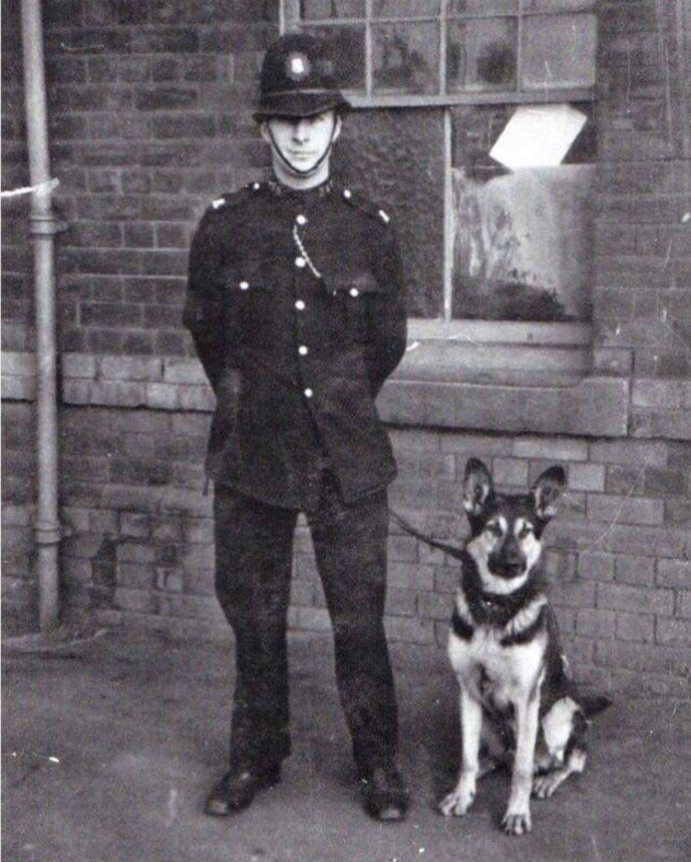 1930-1940: WW2 - 1930's - There was still some evidence that Airedale Terriers were being used in Cardiff Docks - It appears that any officer could take one of the few dogs out on general patrol.During the 2nd WW there is evidence of the introduction of a large number of German Shepherds being used in Hull Docks although their use for security patrols doesn't appear to have been the norm at other ports…