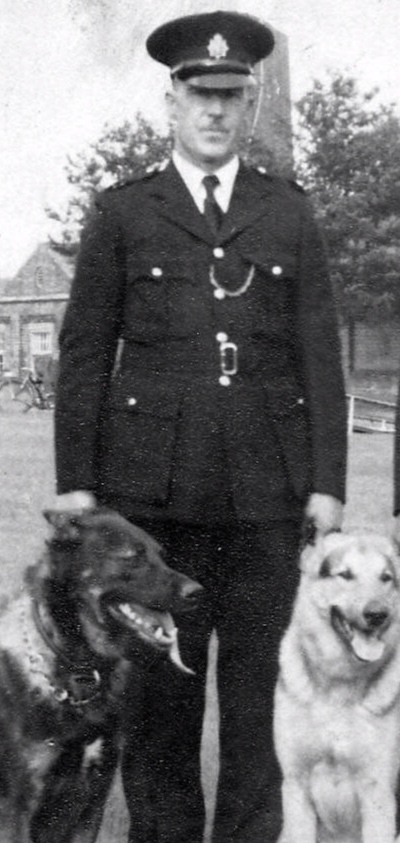 1960-1965: The Death of Inspector Morrell - Inspector Morrell remained in-charge of dog training until February when he suddenly died aged just 46 years.1962 - Following the death of Inspector Morrell, Inspector Shelton was recruited from MPS to run BTCP's Dog Training. In 1946 he had joined the MPS & was subsequently involved in establishing their Dog Section.Police Dogs were based around the country in London, Crewe, Carlisle, Leeds, Hull, Hartlepool and Derby & were introduced at Southampton Docks.1964 - A total of 4 police dogs were introduced at Southampton Docks and were also introduced to Birmingham & South Wales. BTP started their regular yearly 'Police Dog Trials.'1965 - The Dog Training facilities at Hebdon Hull were closed and Training was moved to Elstree.