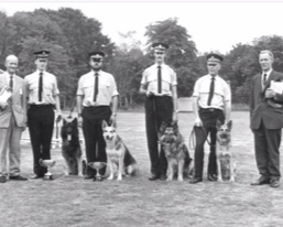 1976-1979: PC Ablard - Chief Inspector Shelton Retired following the closure of Elstree in 1976 and following the closure of the Dog School any remaining handlers would attend HO Training facilities.In 1979, PC Ablard(Ginger) is promoted to Sergeant, tasked with overseeing the remaining Dog Section nationally. At this time morale was rock bottom owing to the devastating cuts in 1975. Sergeant Ablard became a force dog section legend and commenced rebuilding the section.