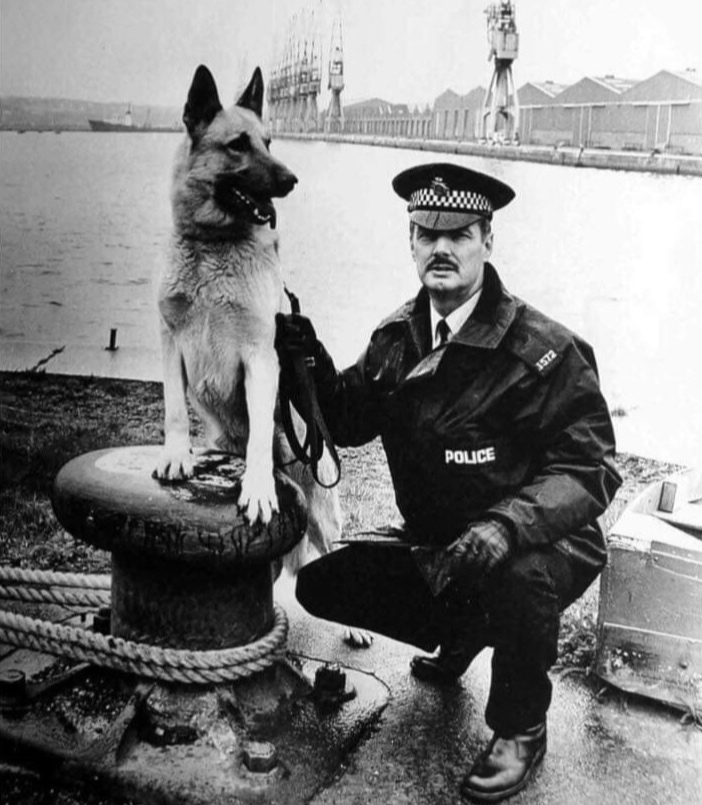1980-1982: PC John Mellor - 1980, PC Parkinson became the first dog handler to undergo training with a dog detecting explosives.PC Alan Morecock became a legend within the Dog Section (Birmingham), trained by PS Ablard. He had a number of dogs, his first dog PD Jazz won awards in 1982/83.1981, PC Gardner joined the Dog Section. His initial training took place at the Lancashire Police Training School, him & his dog Tushka came top of their course.PC John Mellor(Cardiff) & PD Chas were regularly used on Q Trains in order to catch trespassers & vandals.1982, the rebuilding of the Dog Section had started following its decimation in 1975, a new BTP Dog Training School was under construction at the Forces Training School Tadworth.Police Inspector John Lloyd was recruited from MPS Dog Section to increase BTP Dogs with the assistance of PS Ablard.PC Margaret Lyall (Glasgow) became the first BTP woman dog handler (PD Denny).