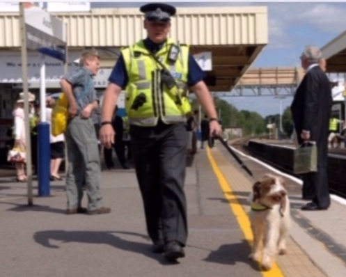 """2000-2005: London Bombings - 2001 - BTP Dog Section raised £960 with quiz nights at Tadworth for the """"hearing dog services' PS Goodyear & PD Milo handed over the cheque on a visit to their Training Centre.2003 - PC Hawkins & PD Keller won the Force Dog Trials they were entered in the London Regional Dog Trials as quests as they weren't allowed to enter the National Police Dog Trials.There was Greater use of the BTP drug detection dogs.2004, following the bombings in Madrid the force ESD dogs increased from 6 to 32.In 2005 the London bombings took place. One Handler PC Coleman & PD Vinnie worked in horrific conditions, PD Vinnie was subsequently awarded the PDSA Gold Medal for his work.The Dog Training School Tadworth supported/managed many courses during this period developing the sections specialist skills."""