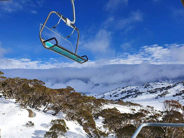 We are hanging to get back up the mountain with all this fresh snow but we've got way too much designin' to do! . . ⨺⨺⨺ . . . #alpinedesignanddigital #creativecontent #creativeagency #jindabyne #jindabynensw #websitedesign #printdesign #branding #brandingdesign #buildyourbrand #alpinedd #logodesign #branddesign #marketing #webdesign #website #logo #design #print #consultation #bringontheweekend #perisher #snow #somuchsnow #chairlift #kosciuszko #kosciuszkonationalpark