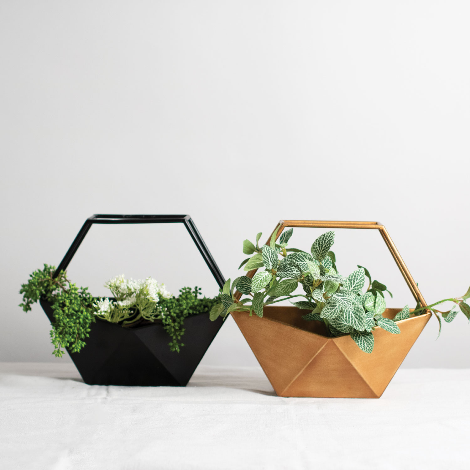 Items Shown: Geo Conservatory Planter  Black ,  Bronze