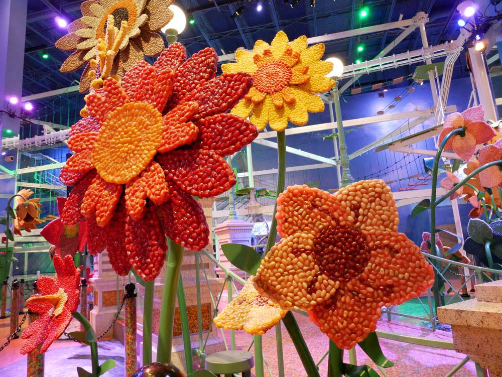 beanflower.jpg