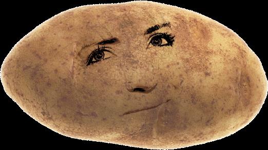 potatoface3_522.png