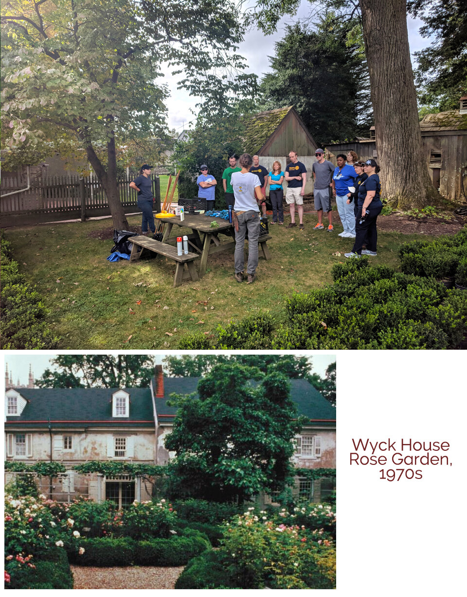 Saturday, September 14, 2019 - WYCK HOUSE GARDENING PROJECT - PLANTING BOXWOOD PARTERRES10:00am‒1pmWyck has continuously preserved the oldest rose garden in the U.S. since 1824. A key architectural element of the beloved garden has long been its boxwood hedging. Unfortunately, the boxwoods were lost to general decline in recent years. With help, Wyck aspires to re-plant the boxwood parterres with improved, disease resistant varieties.6026 Germantown Ave, Philadelphia, PA 19144Contact: Patricia Ellard patriciaellard@gmail.com