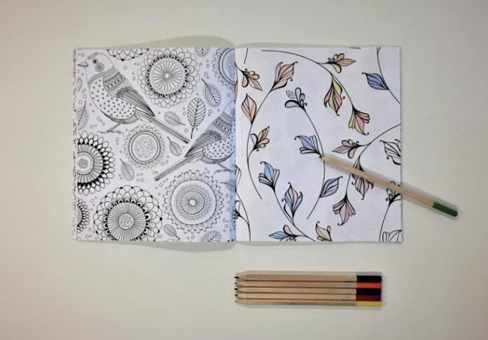 CMHA Case Study Colouring Book