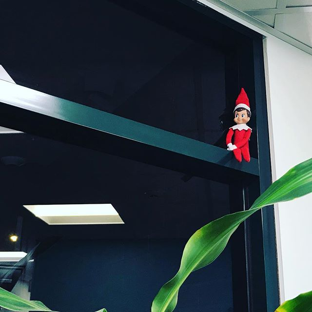 For those who have been in the office lately...show of hands if you spotted our #elfontheshelf ✋