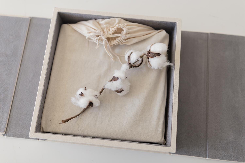 Sweet Snaps Photography Beautiful Album Box.jpg