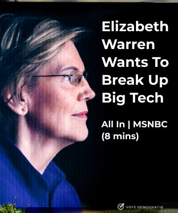 Elizabeth Warren Wants To Break Up Big Tech