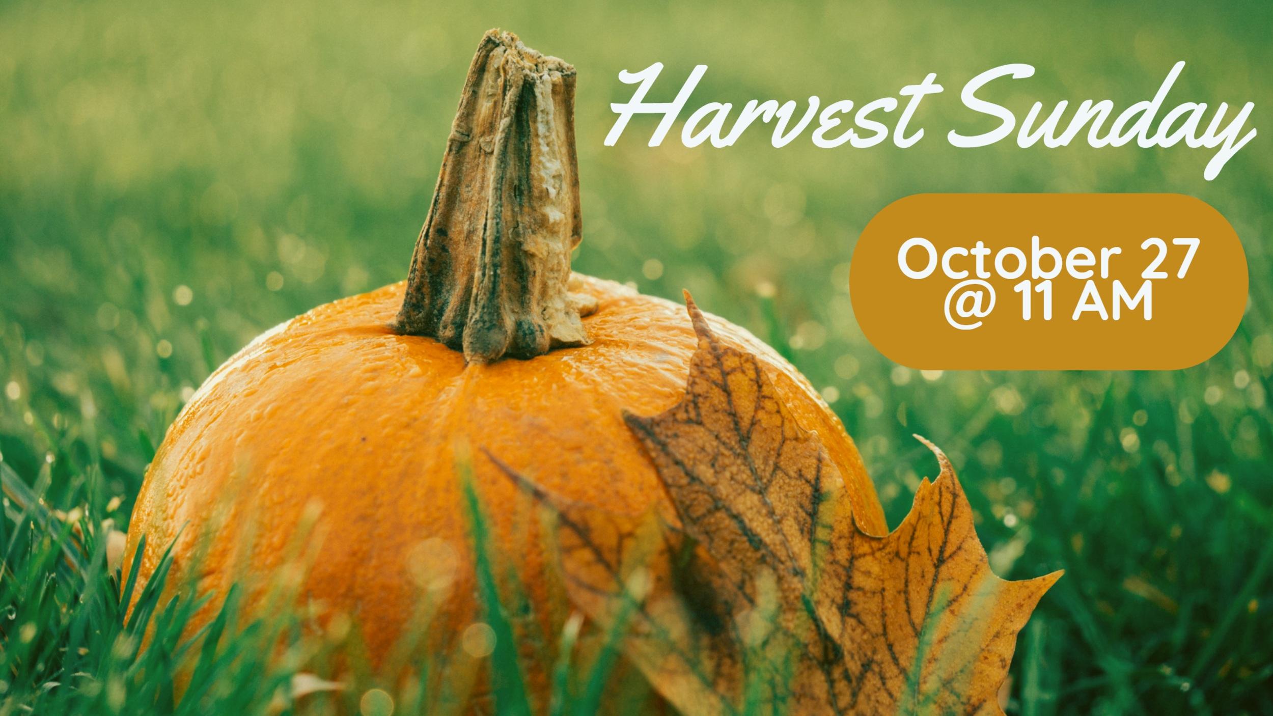 Harvest+Sunday.jpg