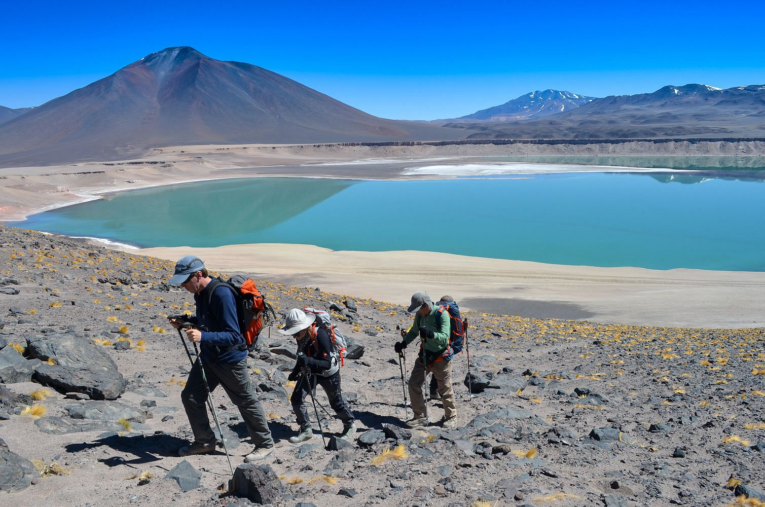 Training and acclimatization process at Laguna Verde near the Ojos del Salado Base Camp. Chile Montaña Expedition 2017.