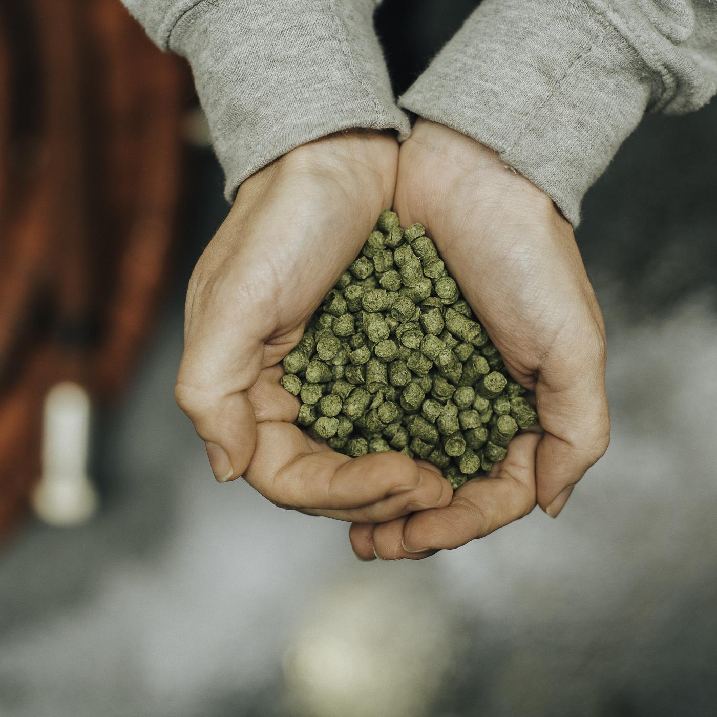 Brewing Shots Sqaure | Eaton Multimedia (56 of 67).jpg