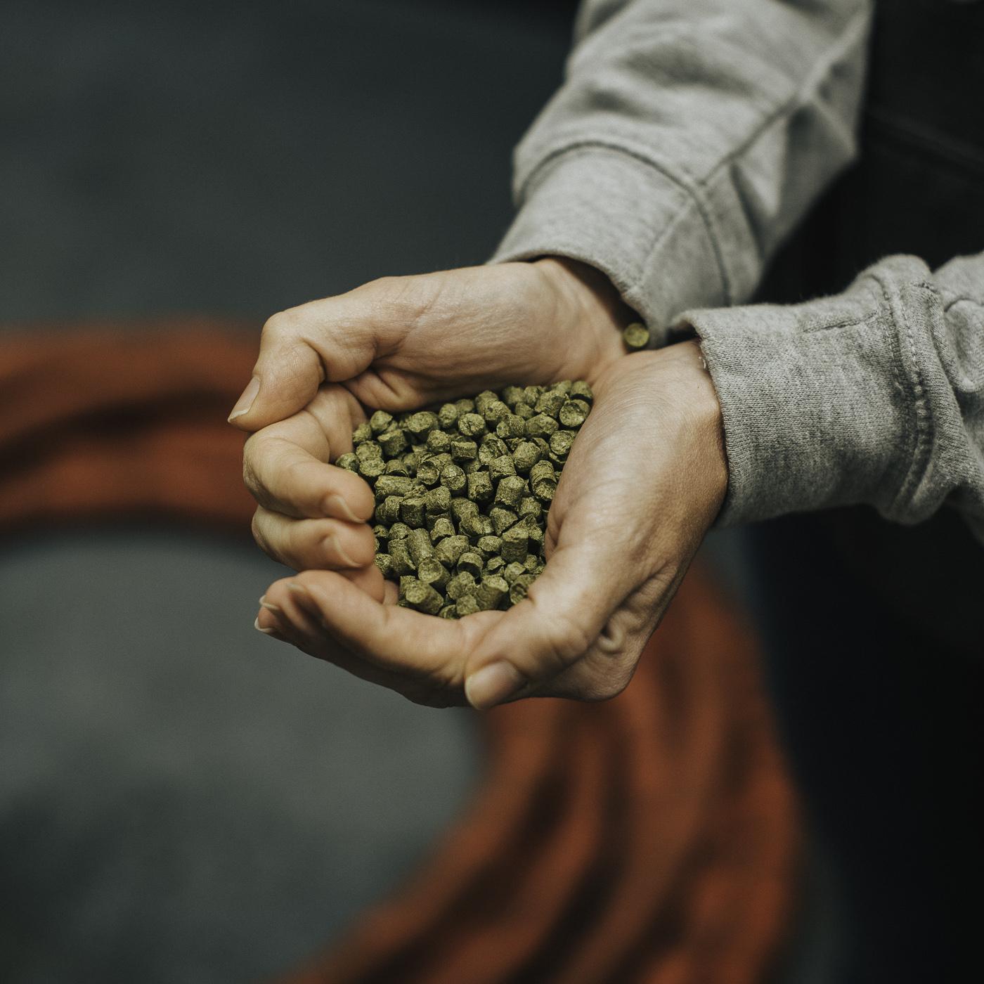 Brewing Shots Sqaure | Eaton Multimedia (54 of 67).jpg
