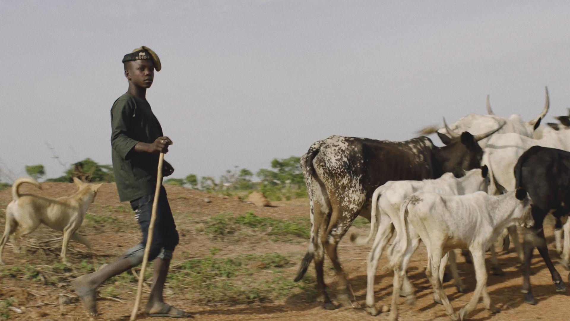 Tk_com_slideshow_nigeria1.jpg