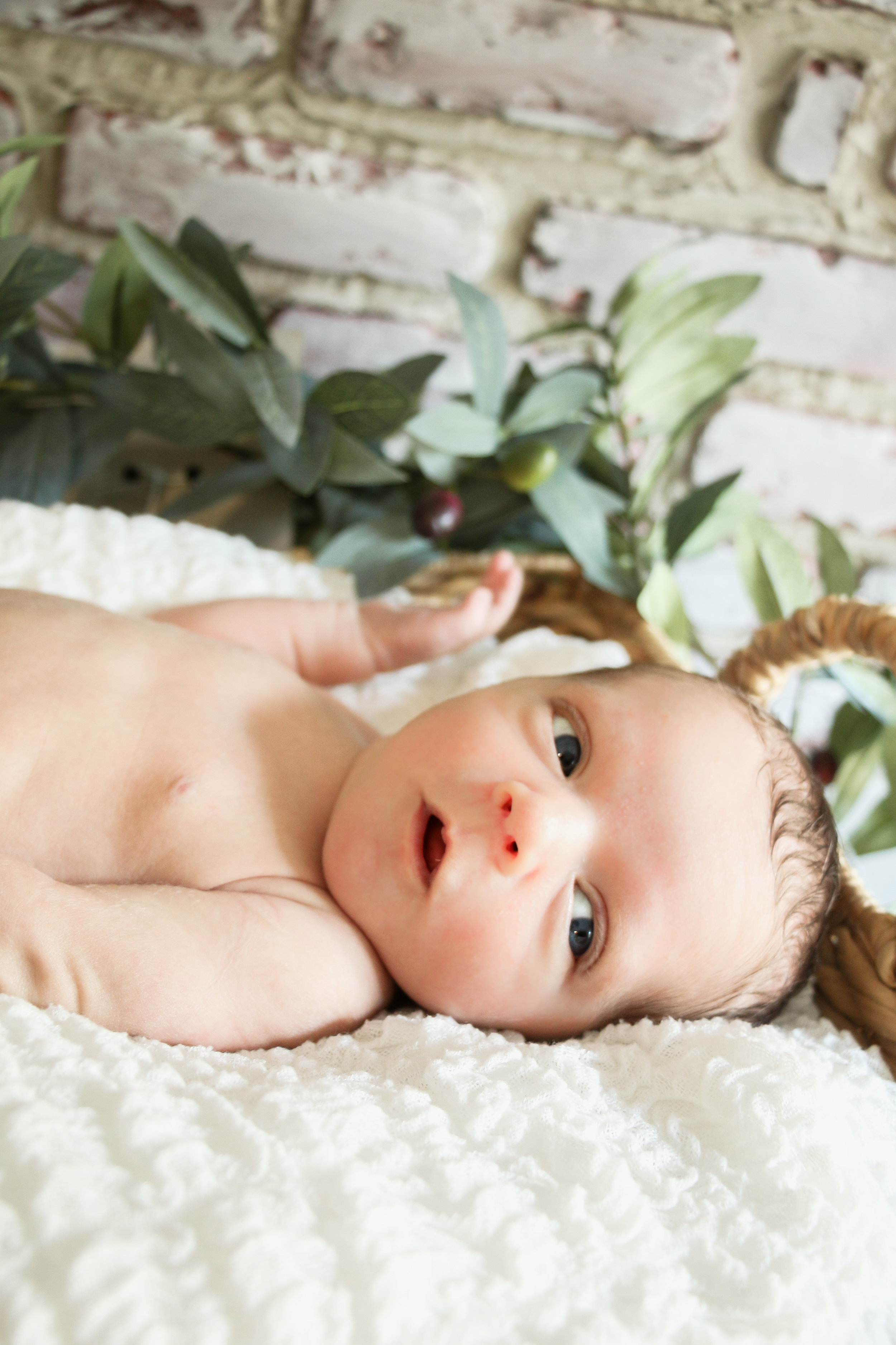 Chicago Newborn Session