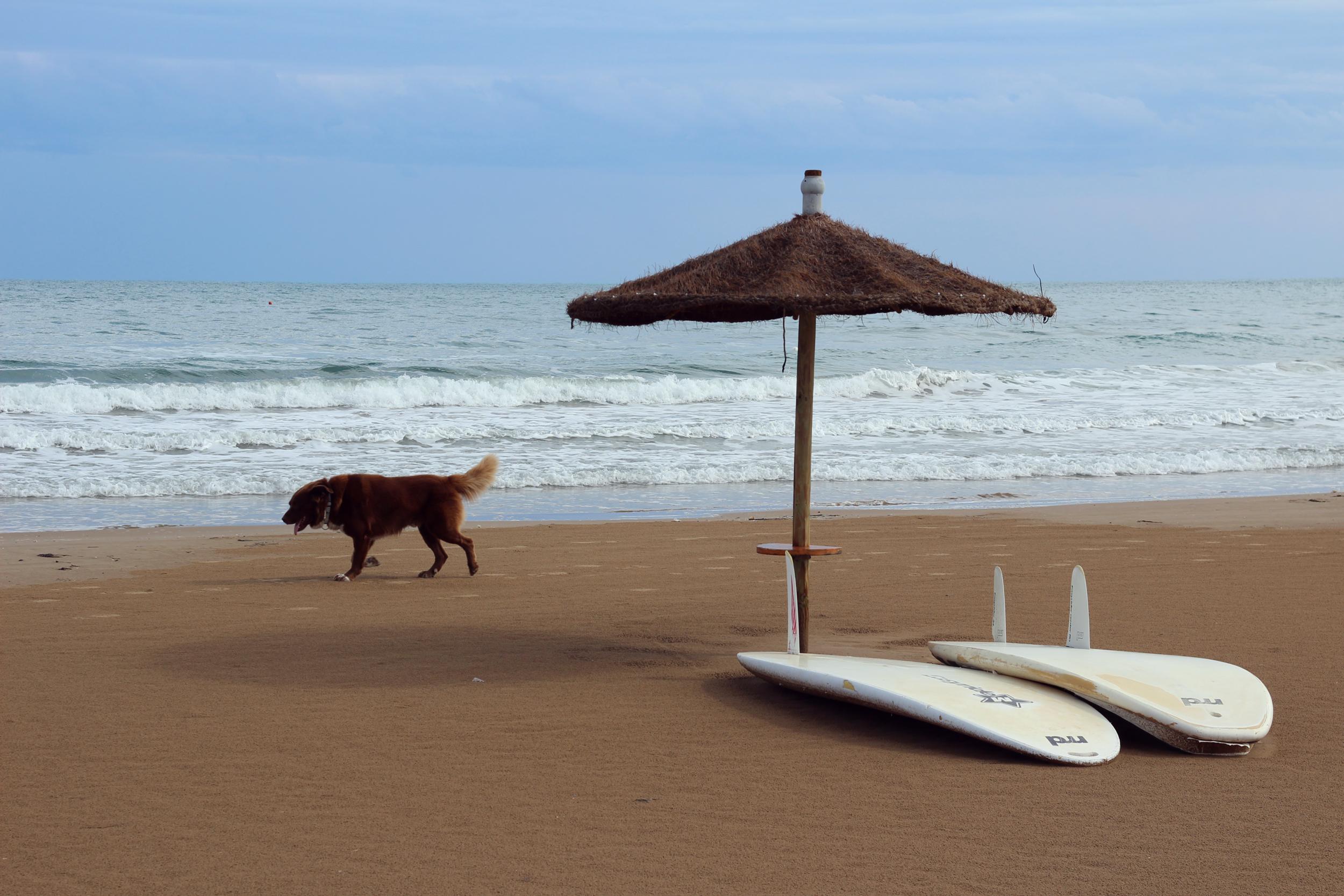 annaporter-adriatic-sea-viest-italy-italia-vacanza-mare-beach-Copy.jpg