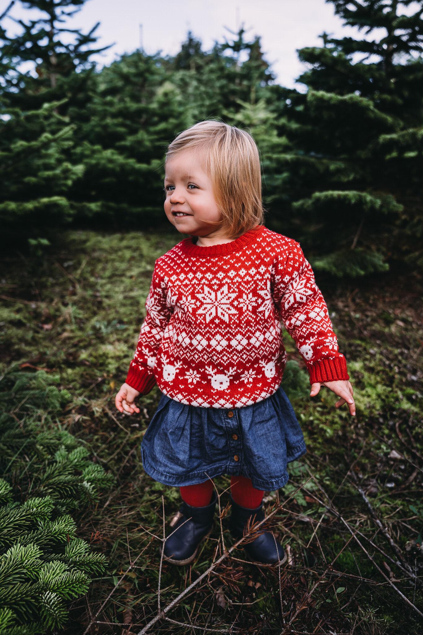 Christmas Tree Farm Mini Portrait Sessions Family Photoshoots Cheshire Alison Holcroft Photography