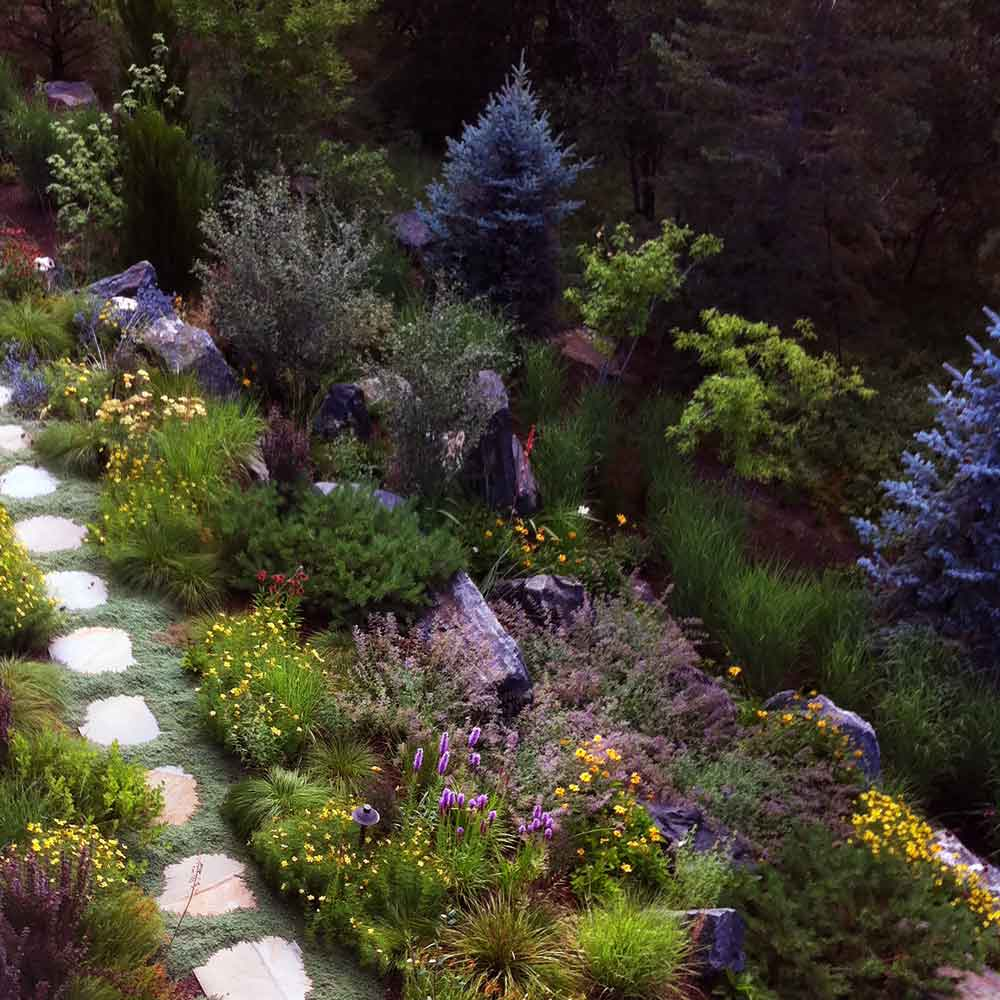 Professional Gardeners - Welcome to Estate Landscape Management, an award winning group of Professional Gardeners dedicated to the long term care and development of your landscape.