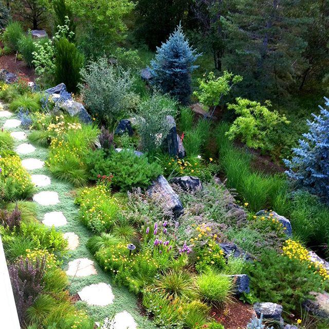 We are #horticulturists and #mastergardeners in Colorado . . . . . . #plant #gardeners #colorado #horticulture #care #plantsofinstagram #gardensofinstagram #personalized #trusted #awardwinning