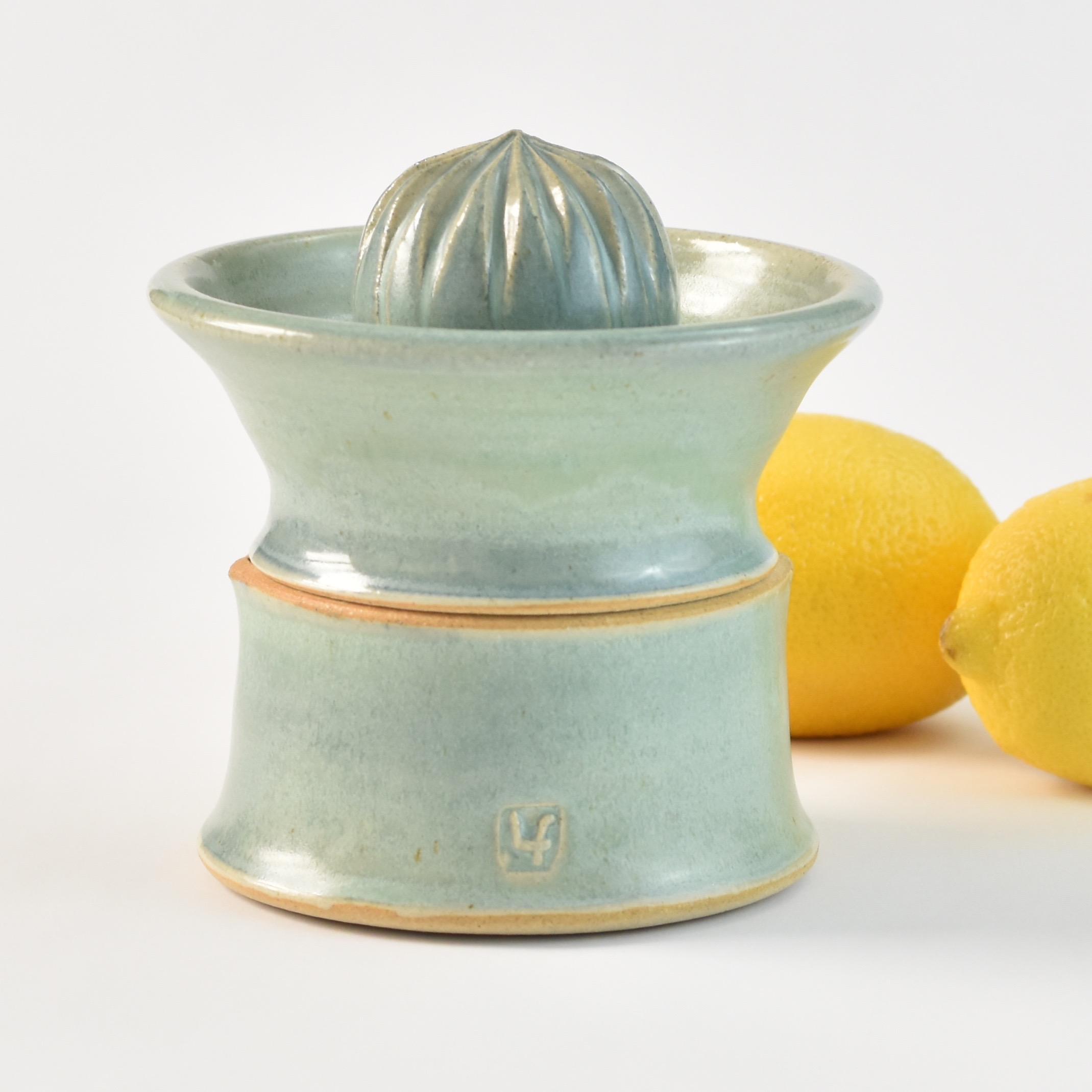 Citrus Juicer with Storage Lucy Fagella.jpg