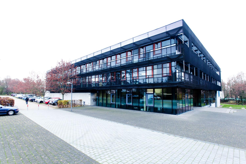 Steinbeis - 0232.jpg