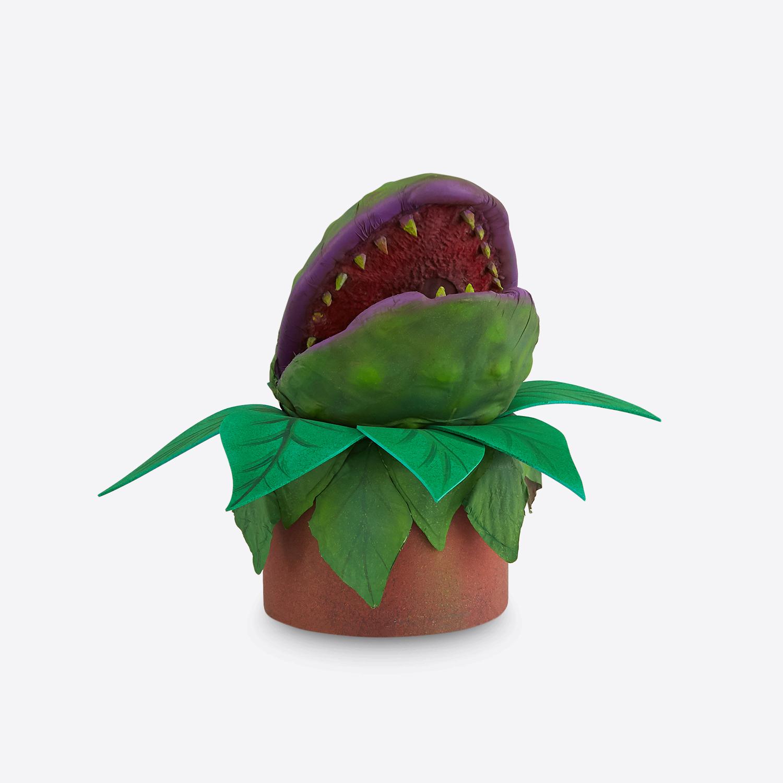 little-shop-plants-8.jpg