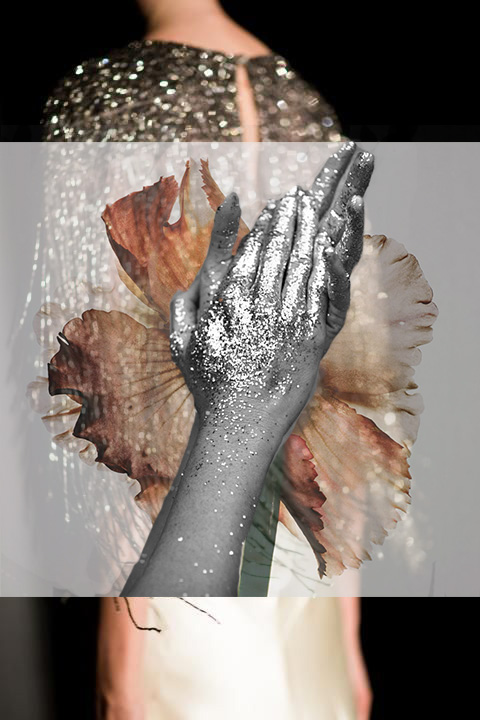 Collage by Aylea Skye/ Original Images by Unknown Sources