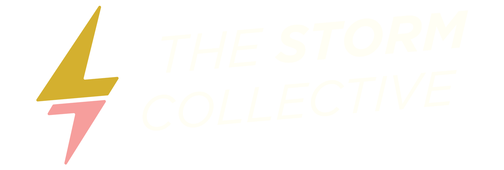 StormLogo_white-Sized.png