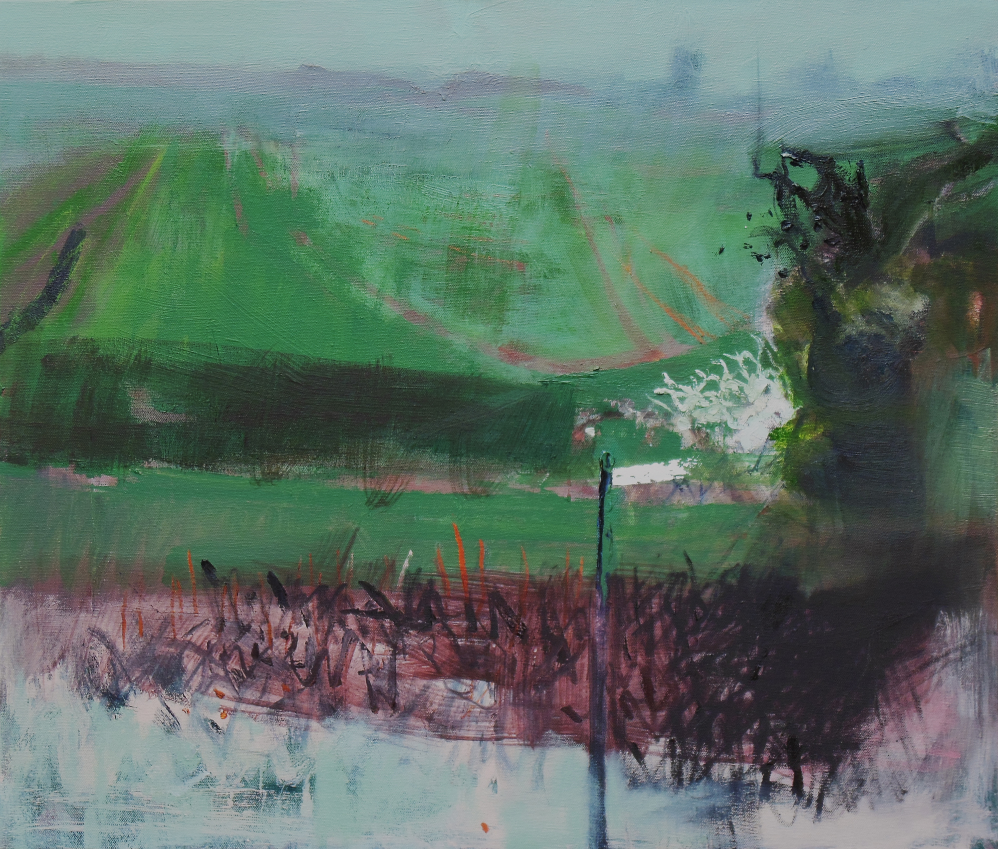 Early Spring North Oxfordshire 10am, oil on canvas, 600 x 700mm web.jpg