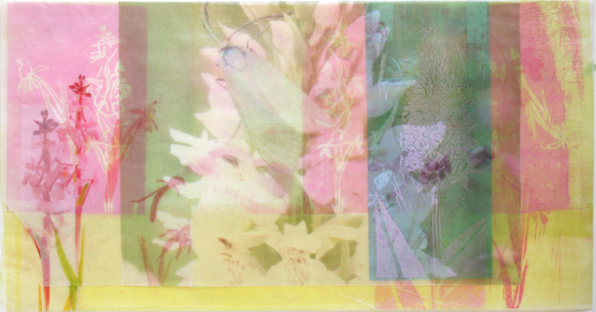 Common Spotted Orchid with Forester Moth and Fragrant Orchid, mixed media 250mm x 450mm