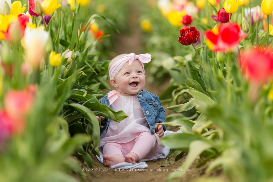 http://www.shannonhagerphotography.com/spring-tulip-field-session-portland-baby-family-photographer/