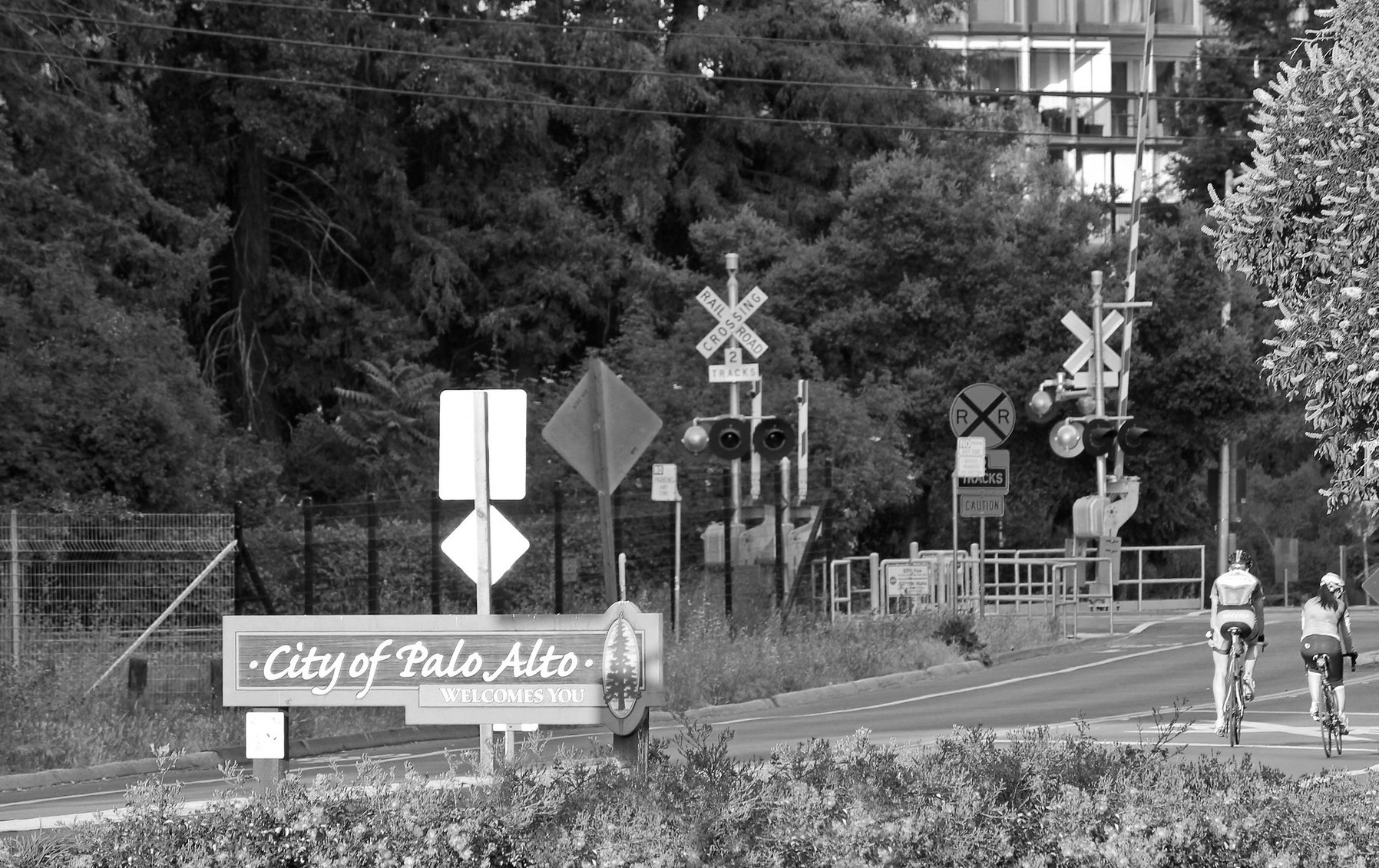 Welcome+Palo+Alto+Blu+Skye+Media+Alma-1796x1152.jpg