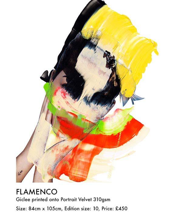 flamenco print (ar).jpg