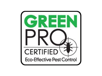 affiliate-logo-green-pro.png