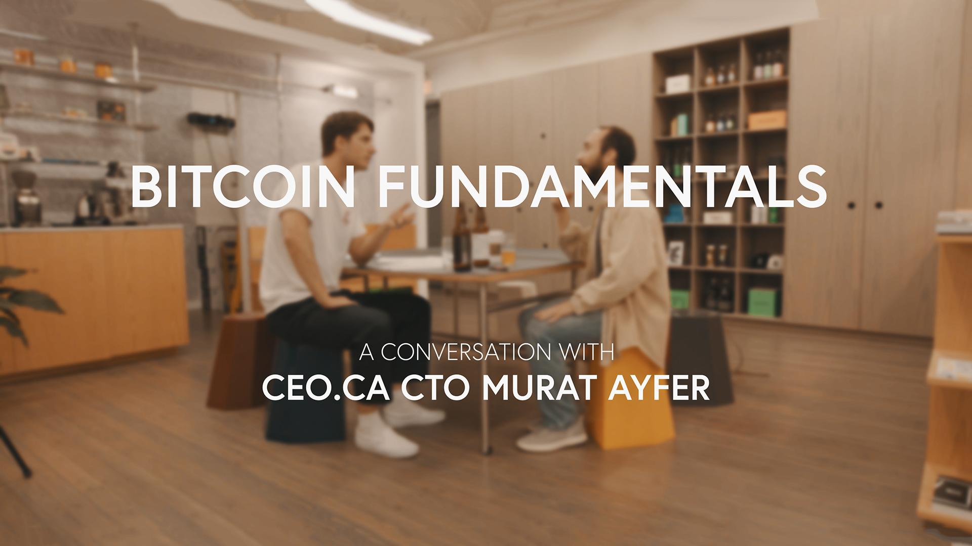 Murat Ayfer - Bitcoin Fundamentals 003.jpg